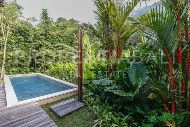 Bali, 2 Bedrooms Bedrooms, ,3 BathroomsBathrooms,Yearly Rental,For rent,1962