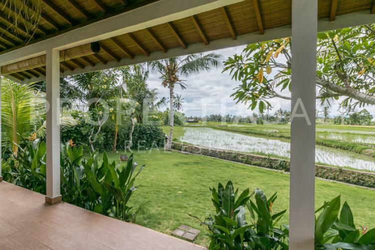 Bali, 2 Bedrooms Bedrooms, ,2 BathroomsBathrooms,Yearly Rental,For rent,2547