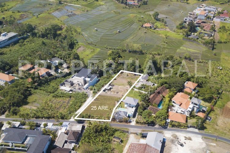 Bali, ,Freehold Land,For sale land,2638