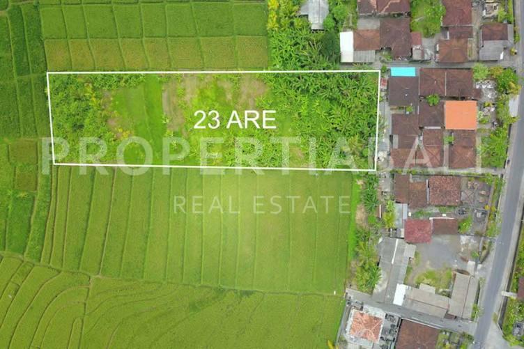Bali, ,Freehold Land,For sale land,2897